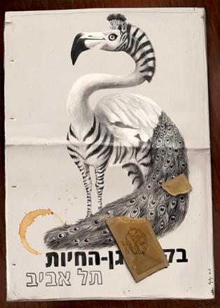 לילי ריו / נמרים בתל אביב