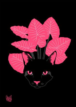 Pink&Black Cat